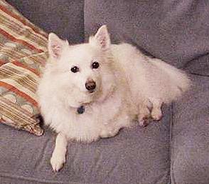 Fi on her Sofa