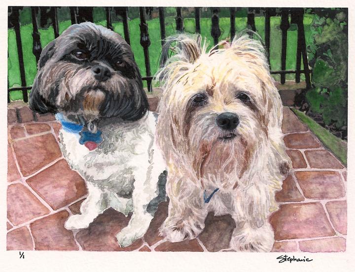 Sonny and Rosie in the garden