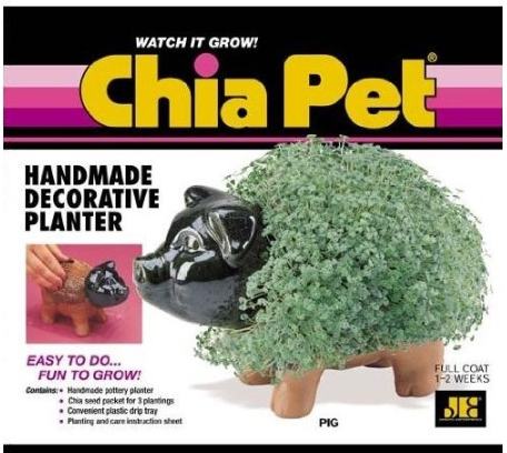 Chia pig from Amazon, $22.