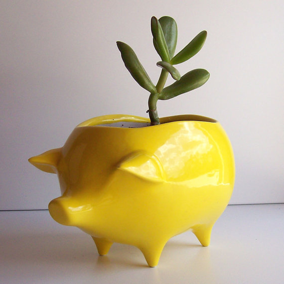 Fruitflypie ceramic pig, $34.