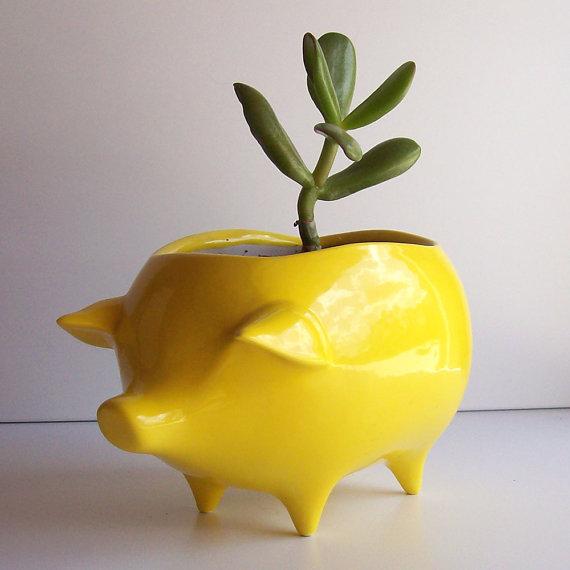 Fruitflypie ceramic pig, $34.